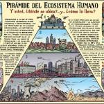 Pirámide del ecosistema humano y la biología democrática..